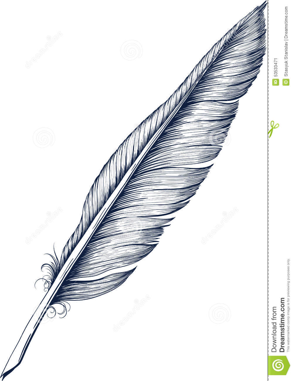 Quill Pen Stock Vector Image 53533471