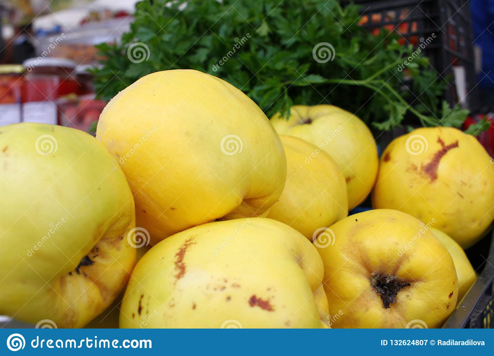 Quince. Fresh organic yellow quince background. Fruits pattern. Quince wallpaper. Healthy eating concept