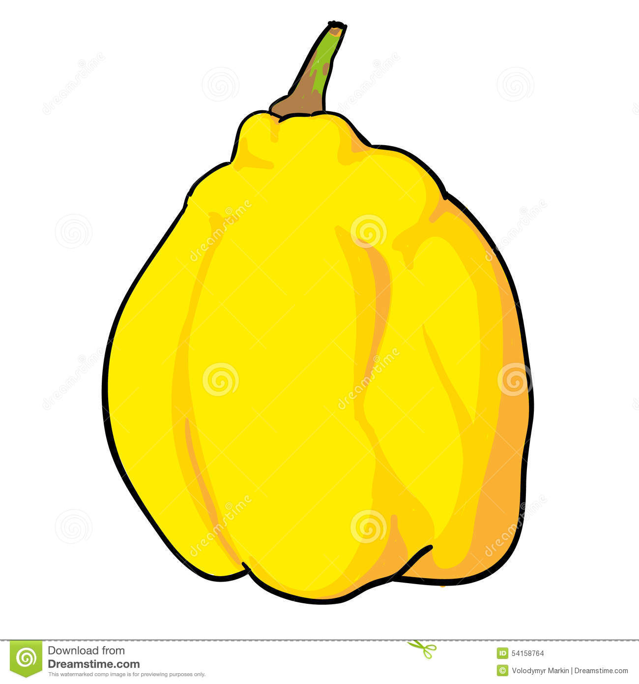 Quince Hand Drawn Fruits Isolated Stock Illustration