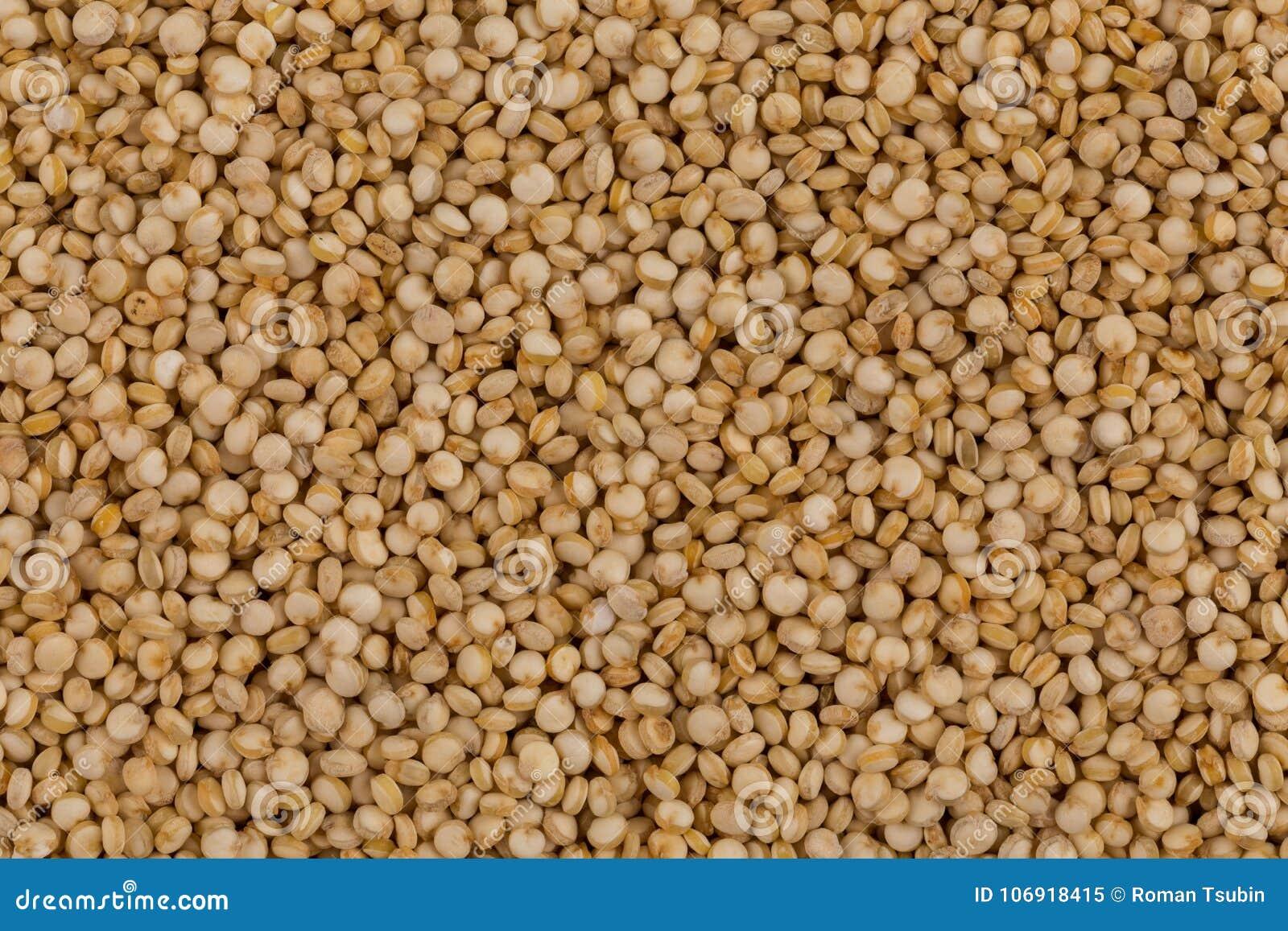 Quinoa ziaren zamknięty up