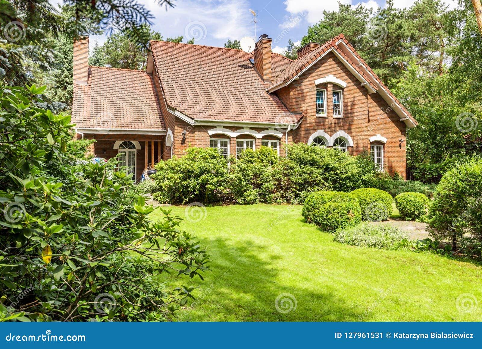 Quintal de uma casa inglesa bonita do estilo com arbustos e gree