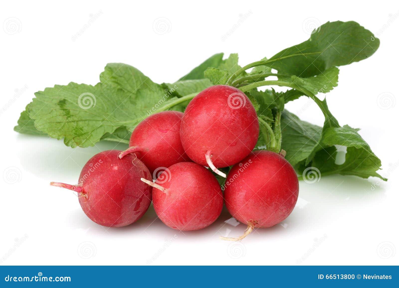 Rábano rojo fresco
