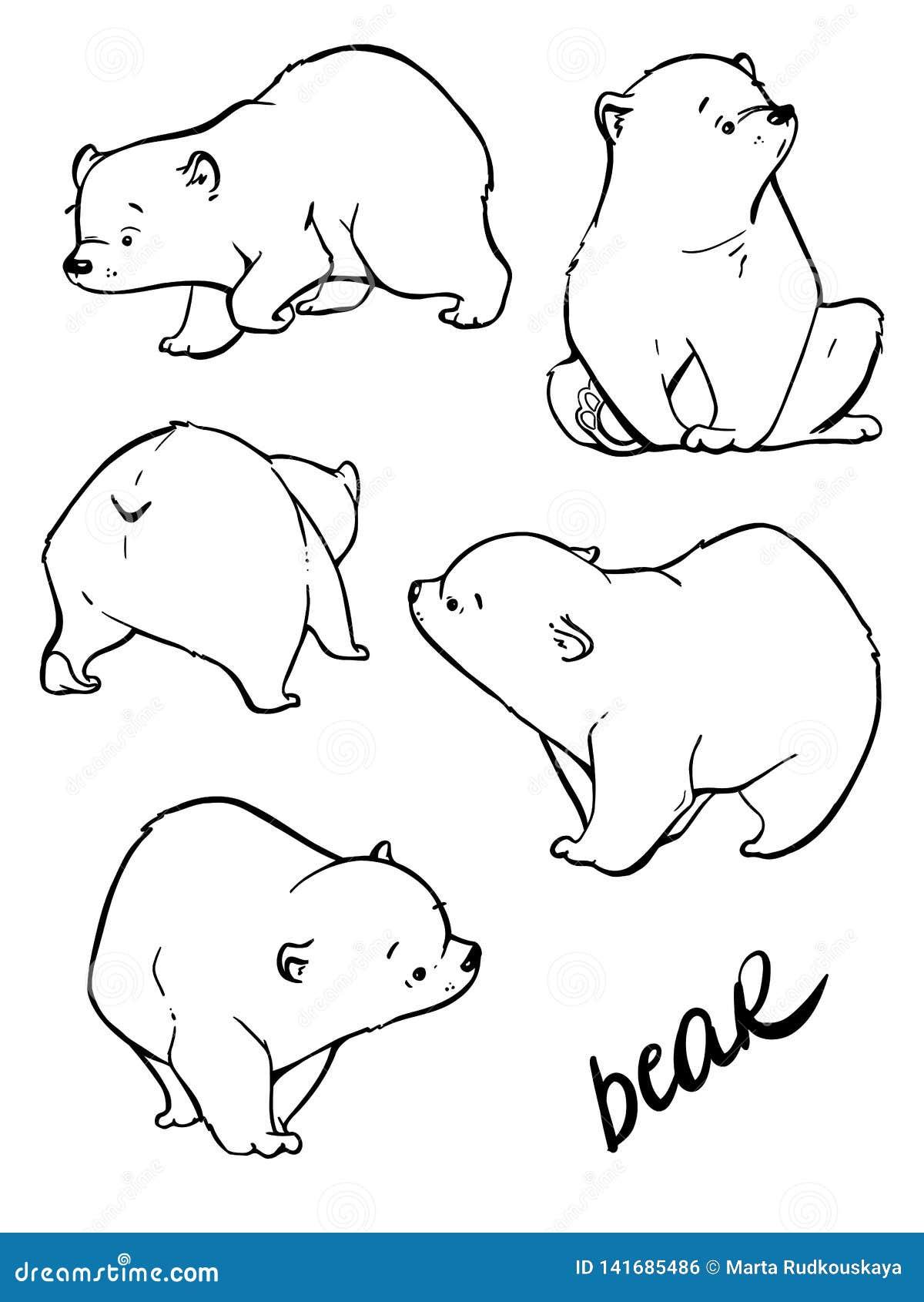 Ręka rysuje ślicznego niedźwiedzia z mnóstwo różnicą