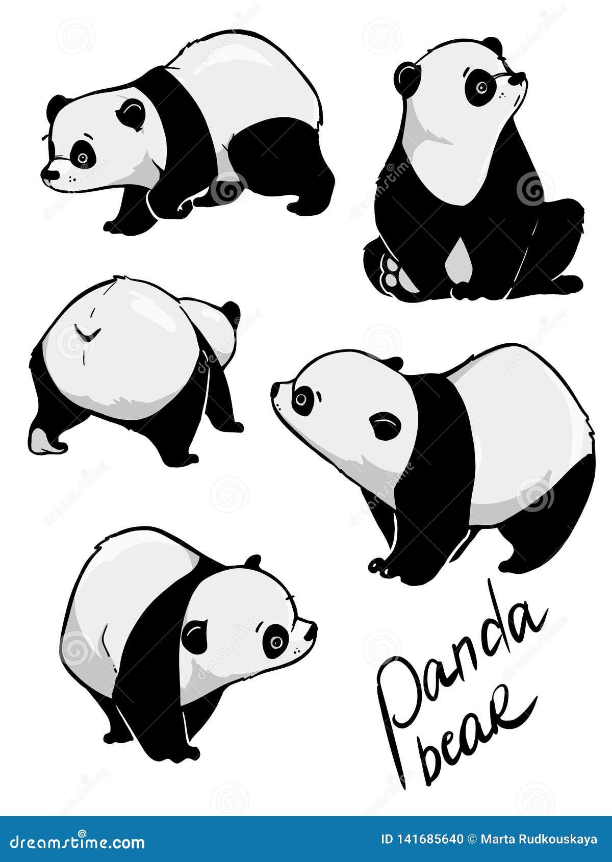 Ręka rysuje ślicznej pandy z mnóstwo różnicą
