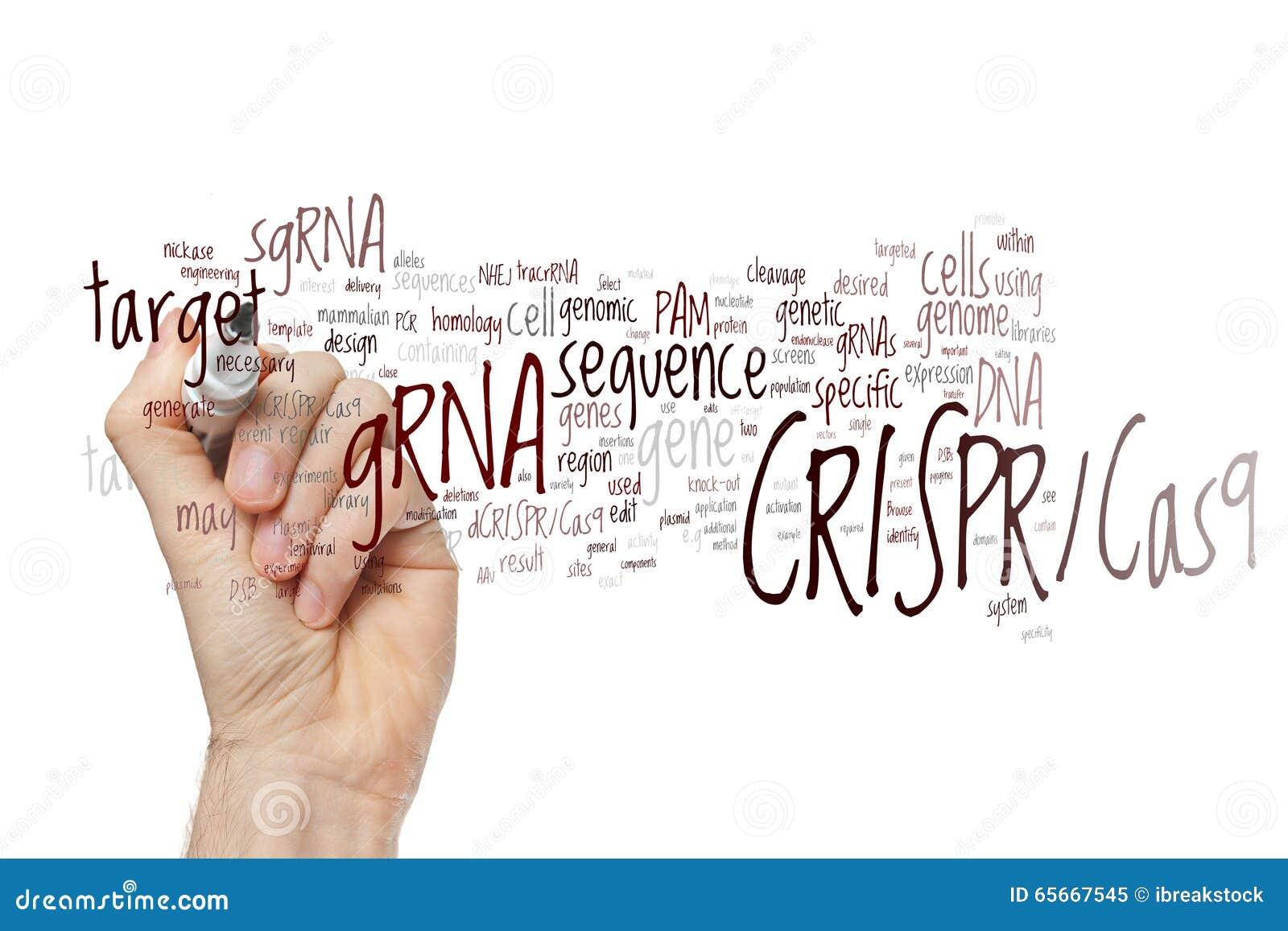 Räcka att skriva systemet CRISPR/Cas9 för att redigera, reglering och att uppsätta som mål av genom
