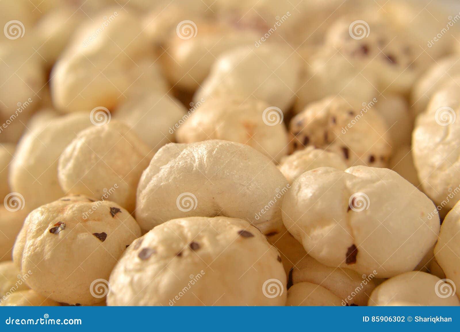 Rävmutter Lotus Seeds Close Uo