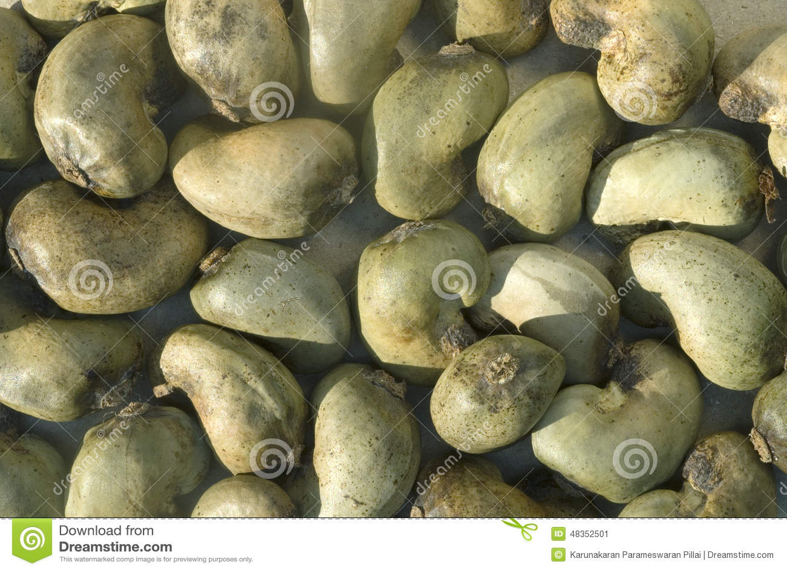 Rå cashewmuttrar