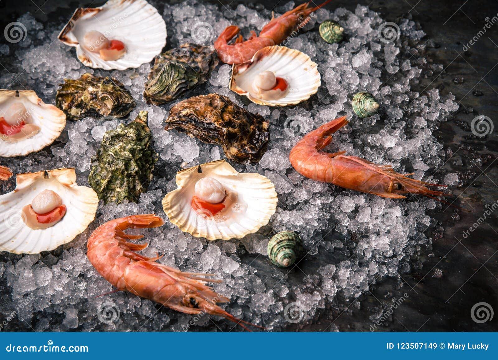 Rå skaldjur: kammusslor, langoustines, räkor och ostron