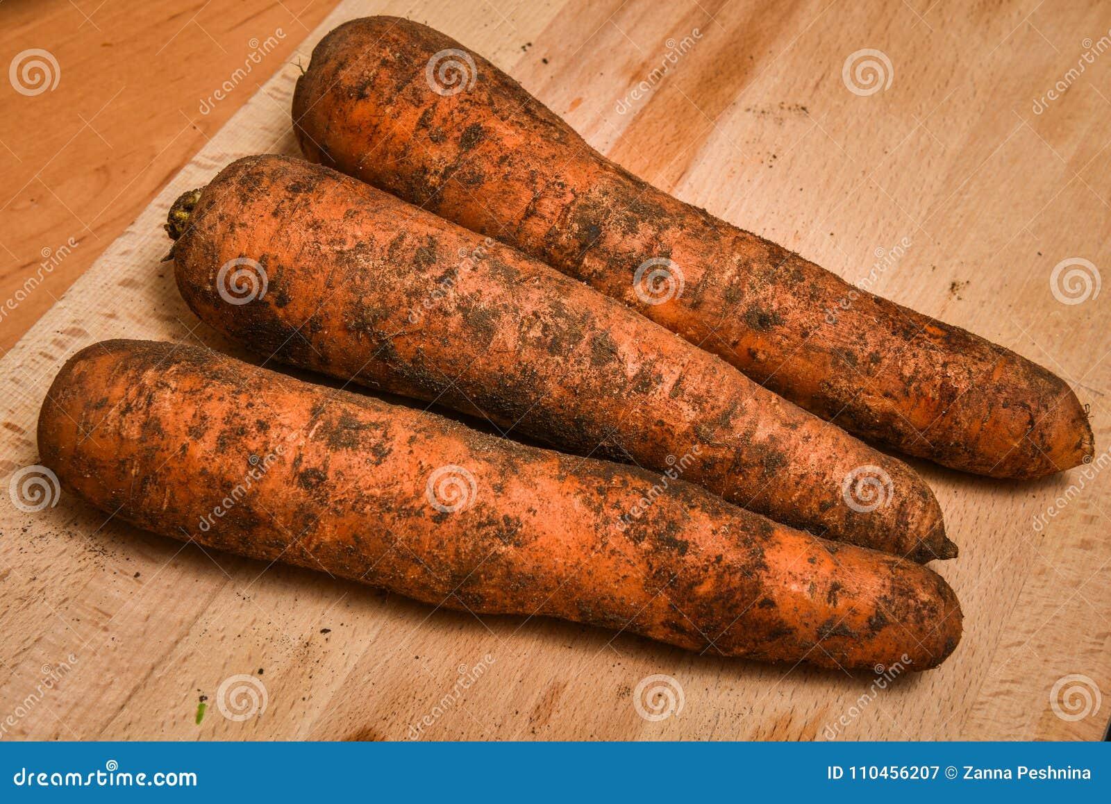 Rå smutsiga morötter på tabellen