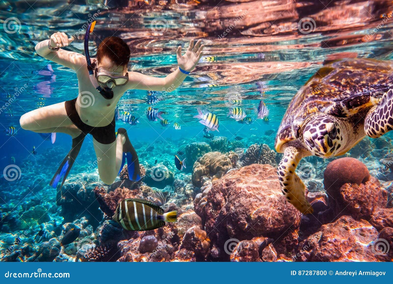 Récif coralien de l Océan Indien de Snorkeler Maldives