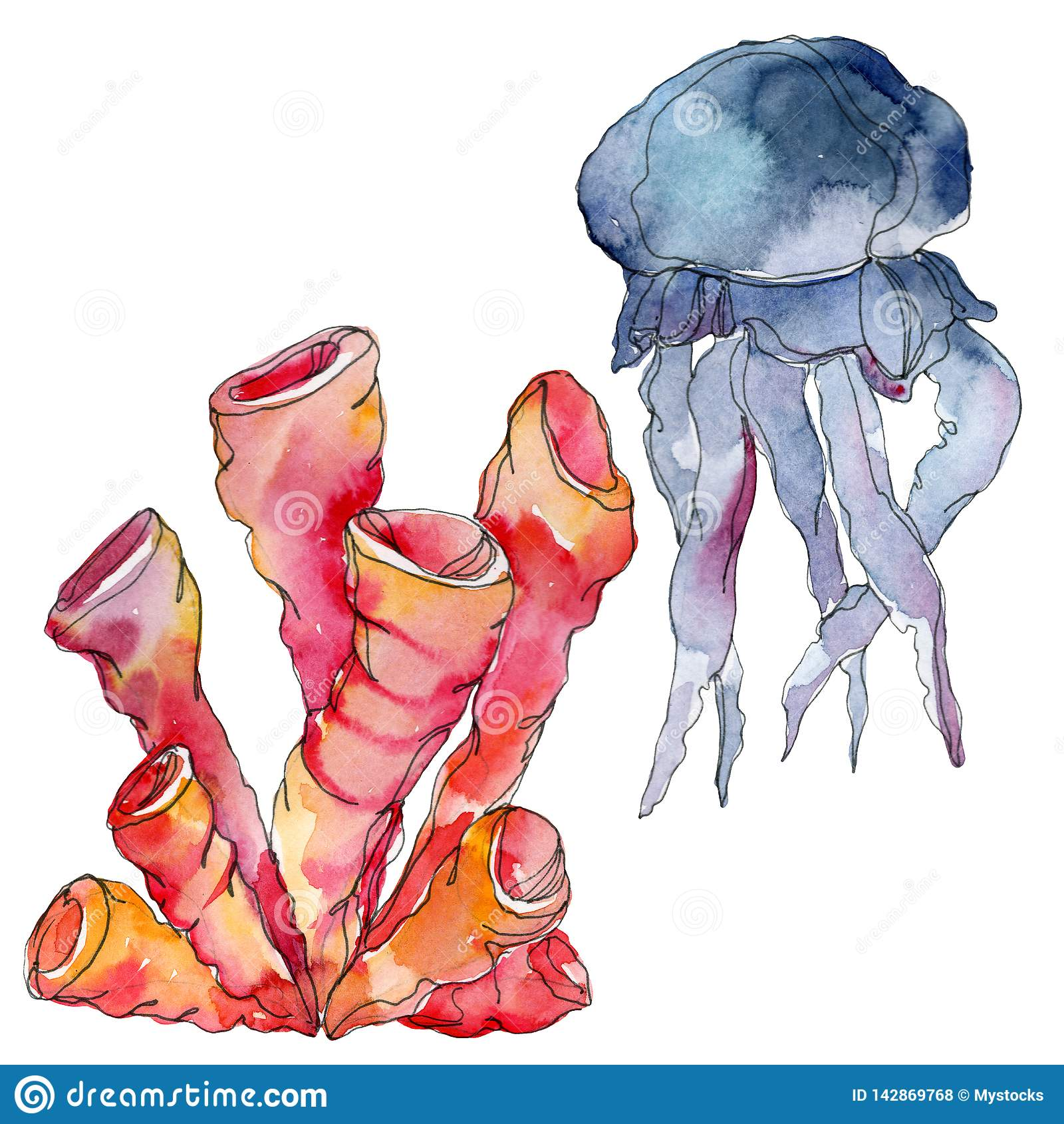 Récif coralien de méduses et de nature sous-marine aquatique Mer de plante tropicale d isolement Ensemble d illustration de fond