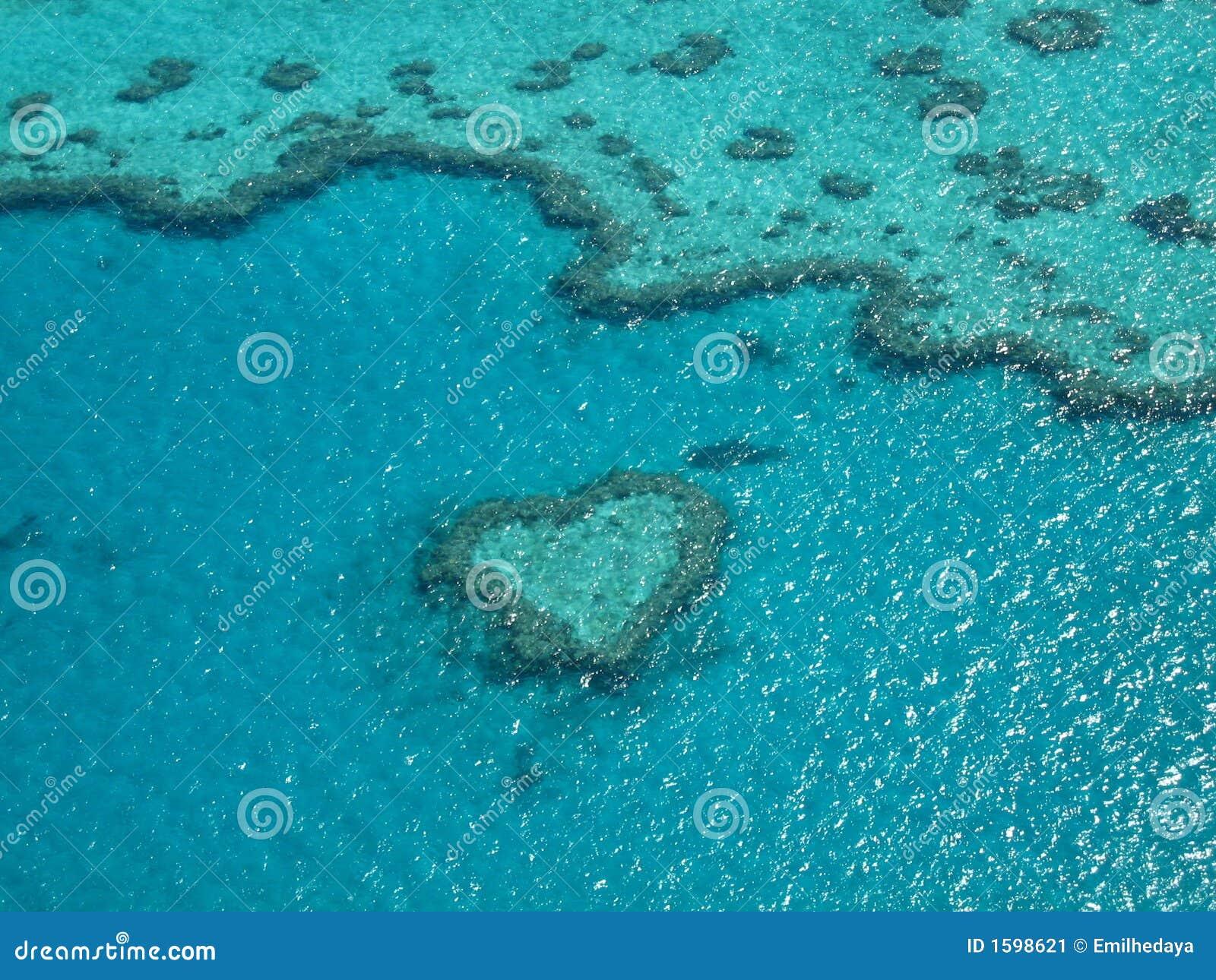 Récif de coeur