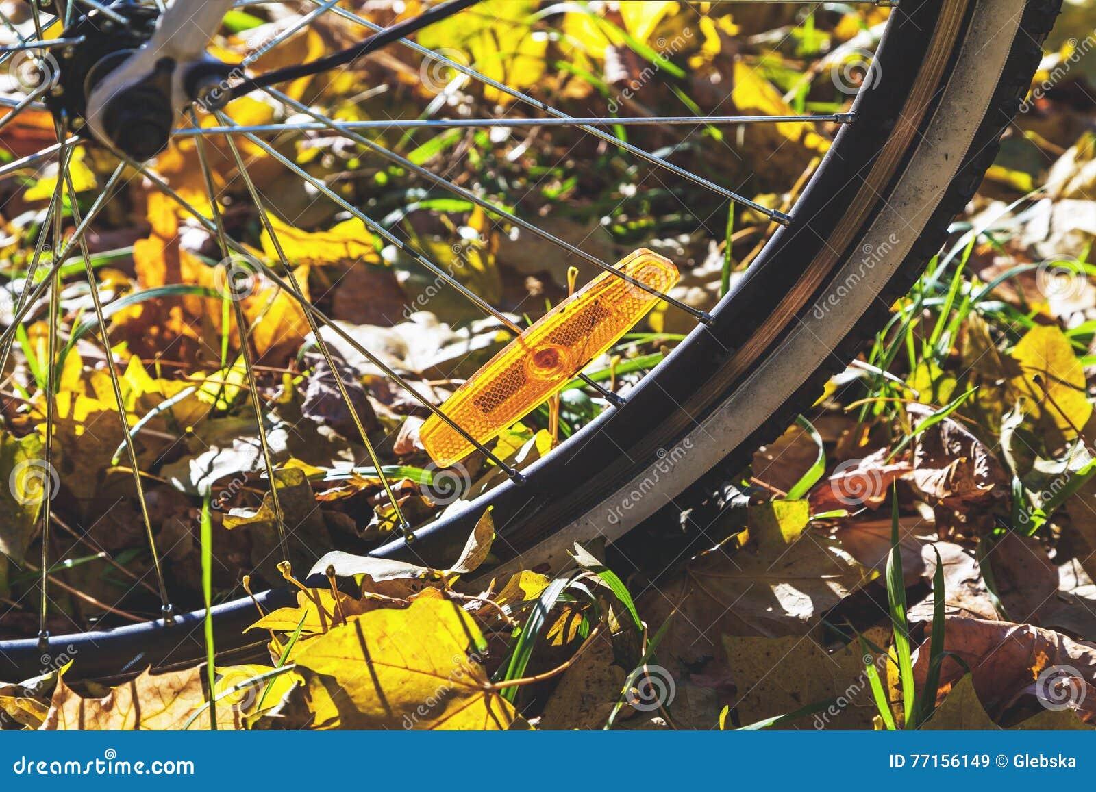 Réflecteurs oranges sur des rais de jour d automne de bicyclette
