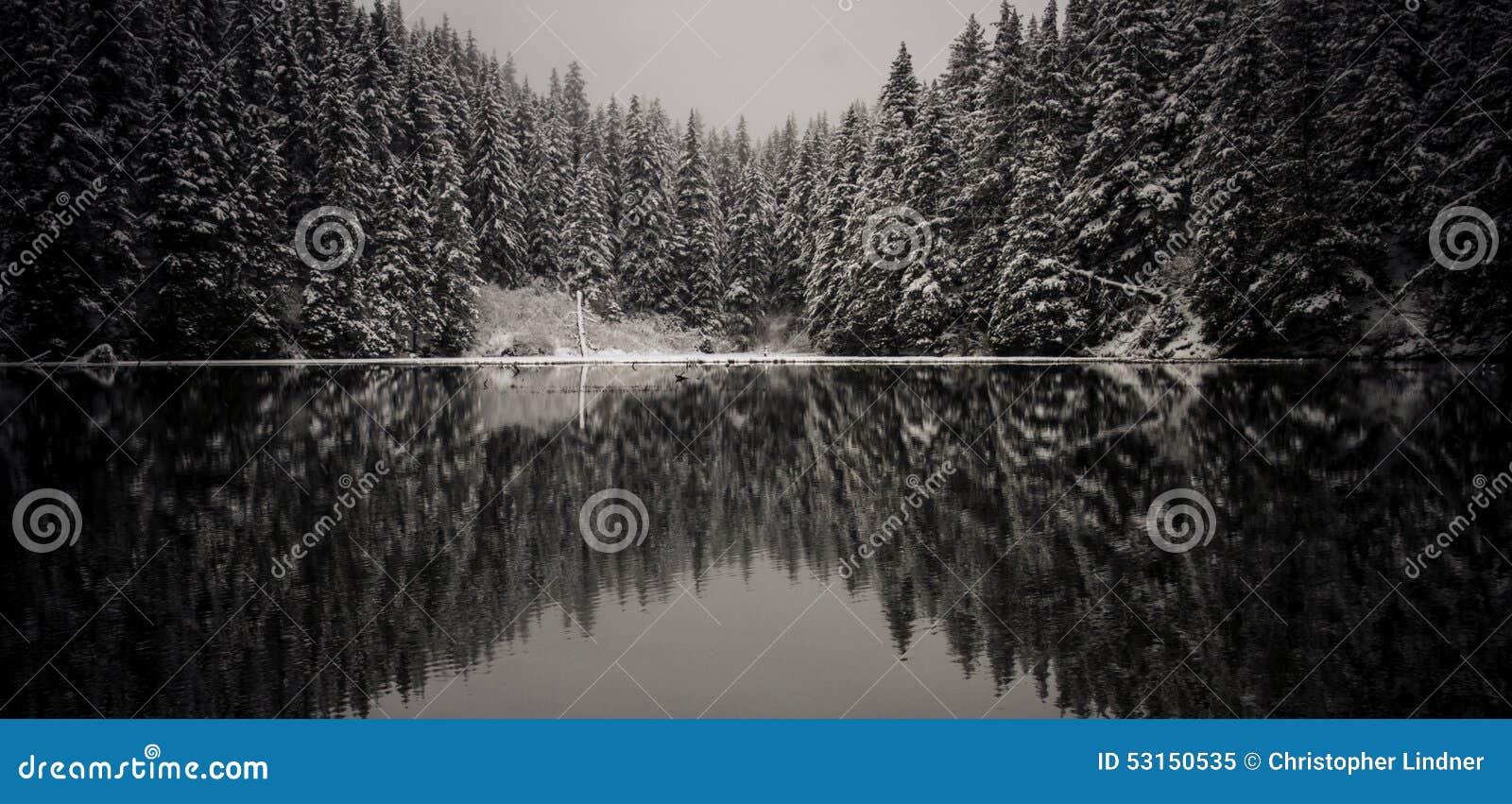 Réflexion impeccable d hiver