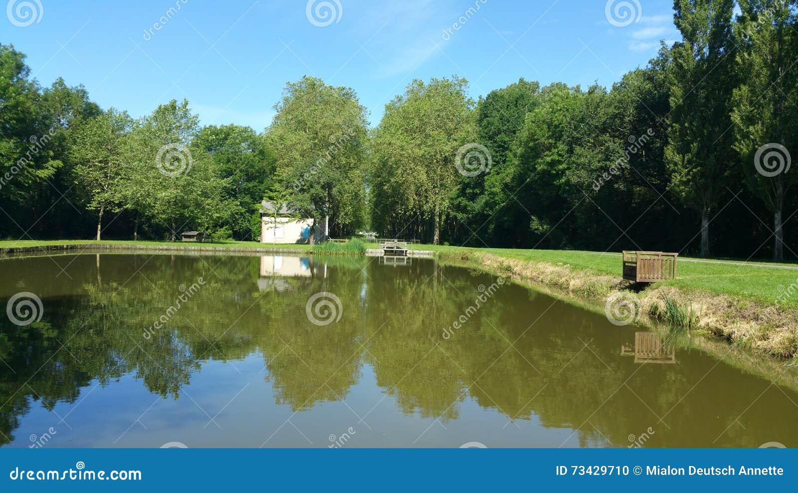 Réflexion sur l étang