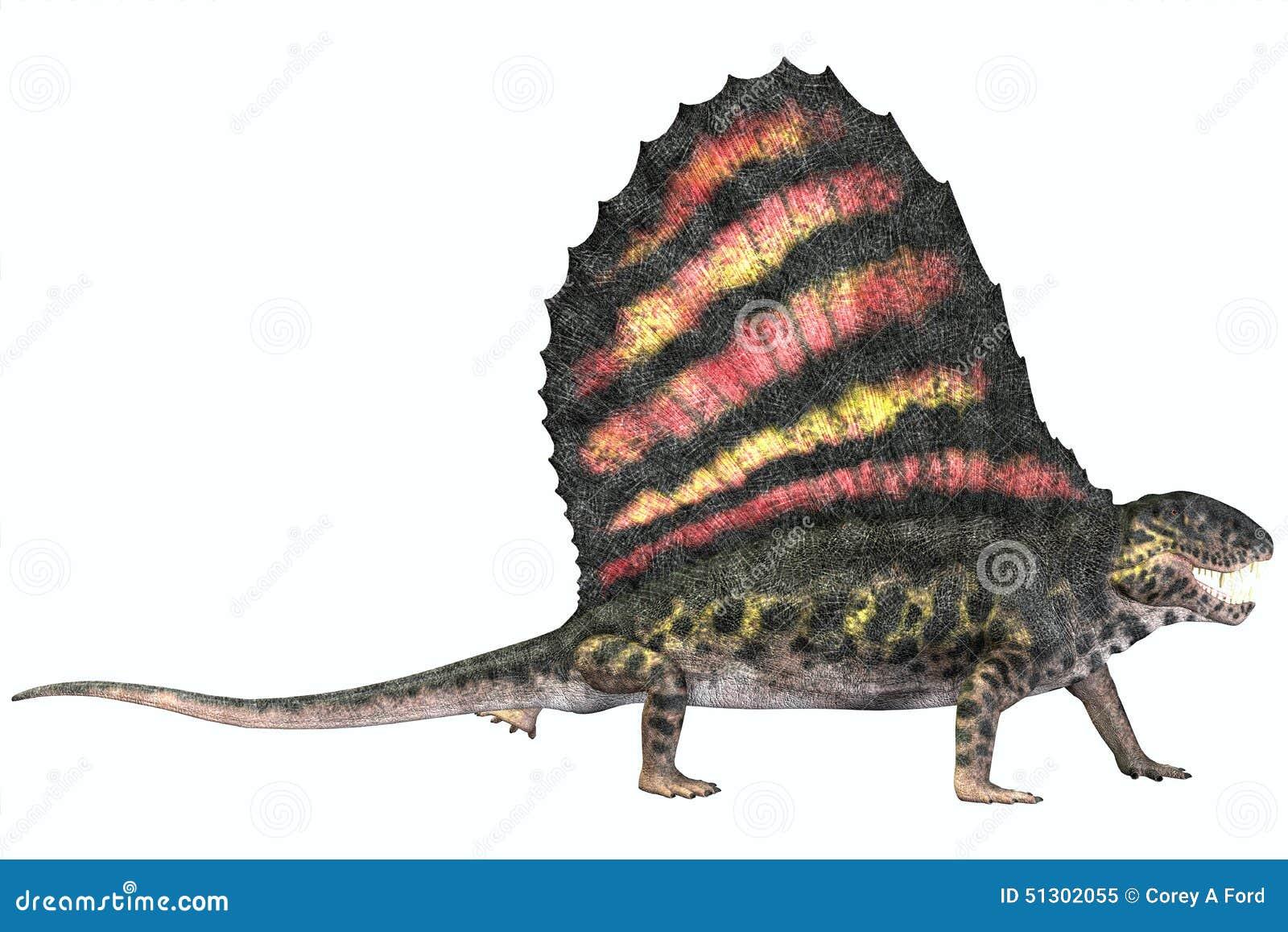 Réptil do Permian de Dimetrodon