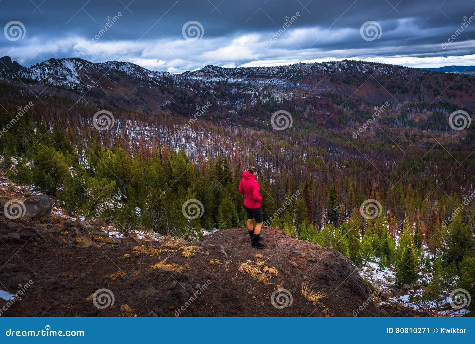 Réserve Forestière De Malher De Région Sauvage De Montagnes De