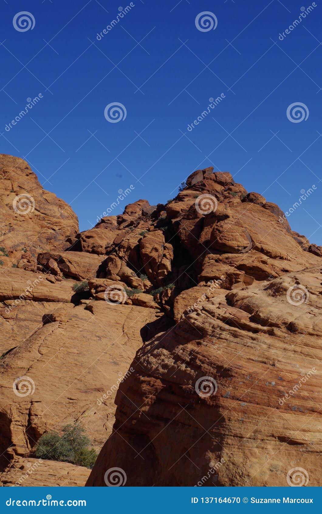 Réservoirs de calicot, région rouge de conservation de roche, Nevada du sud, Etats-Unis