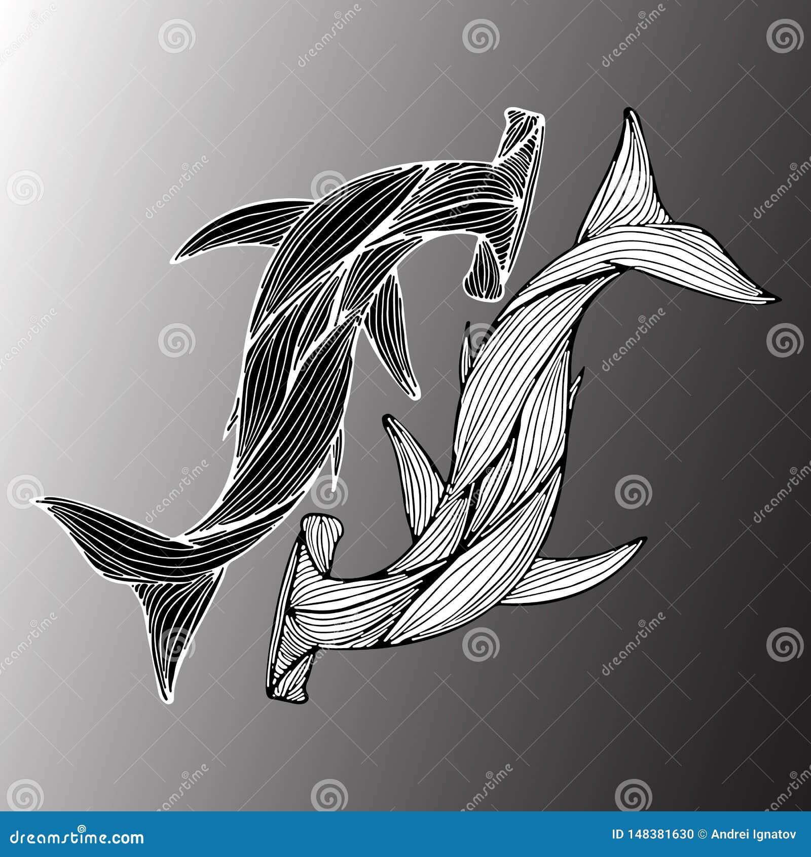 Résumé tiré par la main de deux requins géants de marteau d isolement sur le fond gris Illustration de vecteur contour Sch?ma Vue