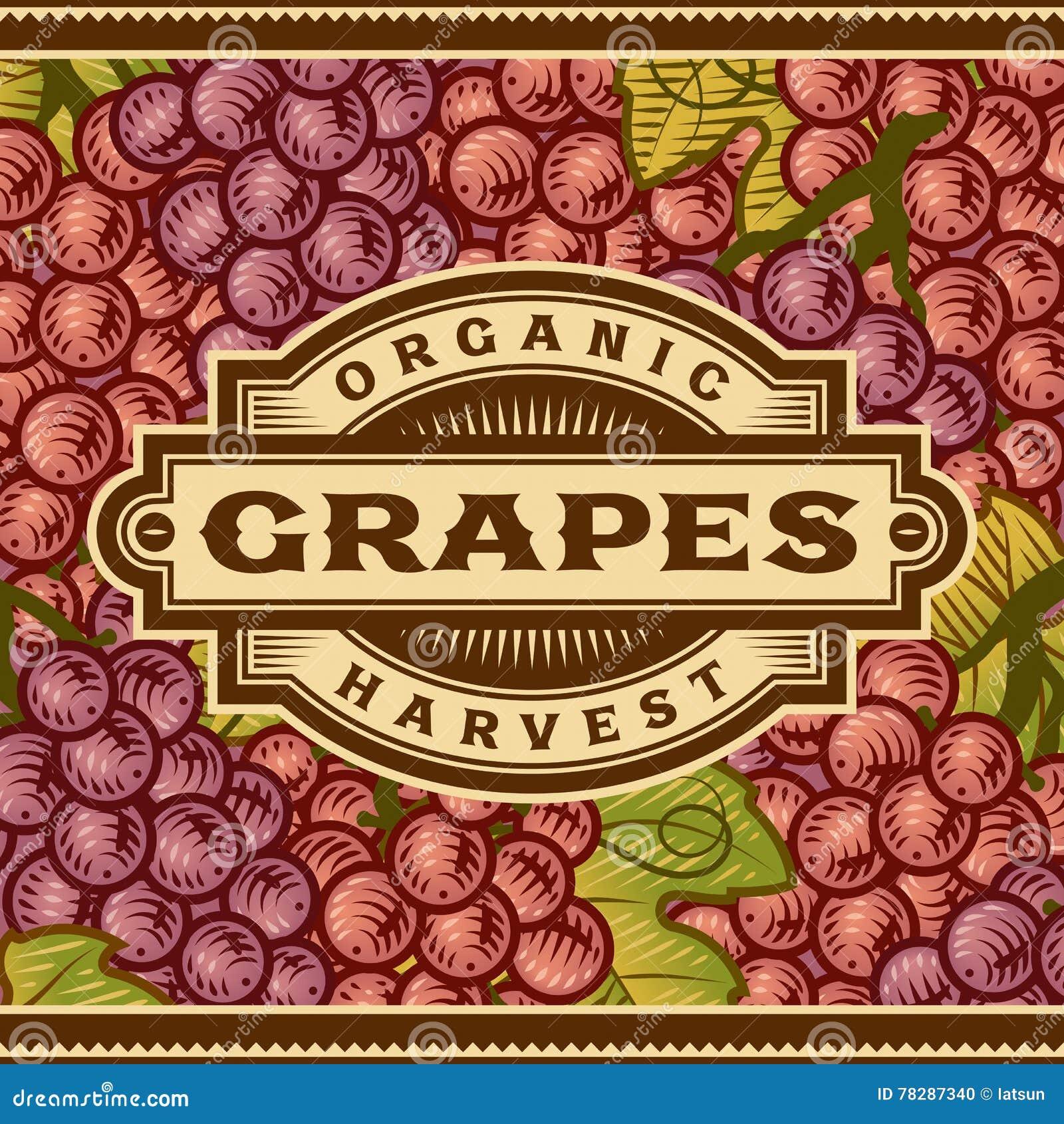 Rétro label de récolte de raisins