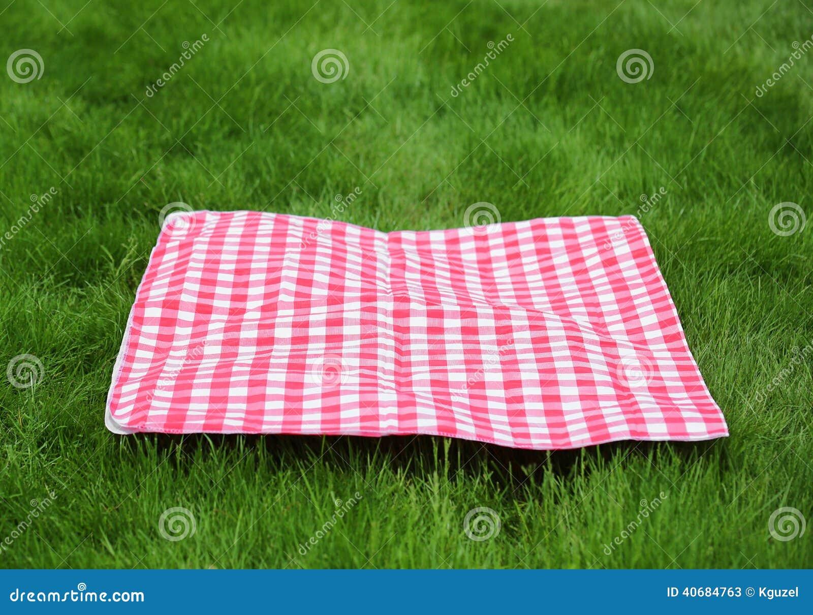 r 233 tro nappe de pique nique sur l herbe verte photo stock image 40684763