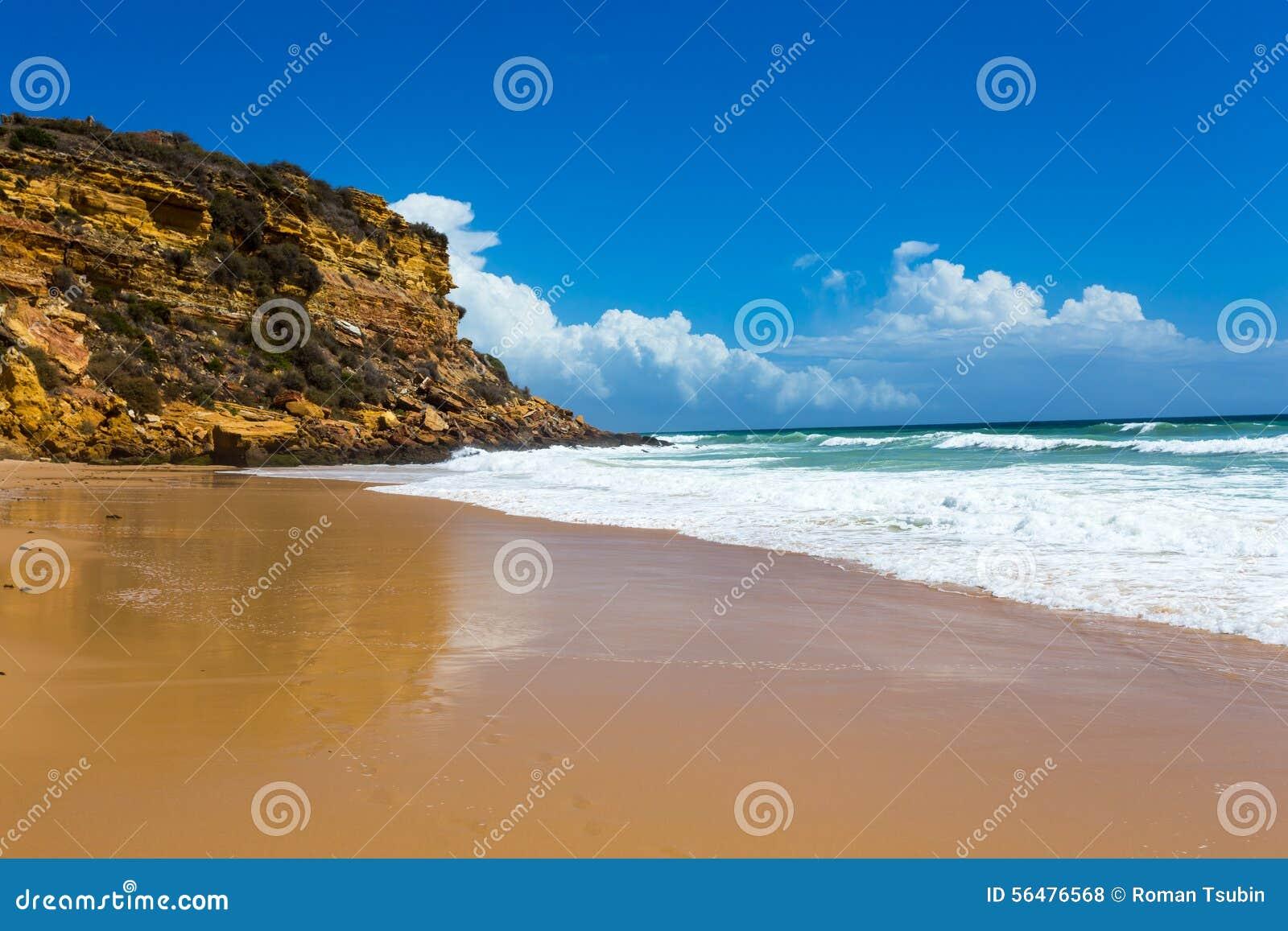 Rétro style de vague tropicale de plage