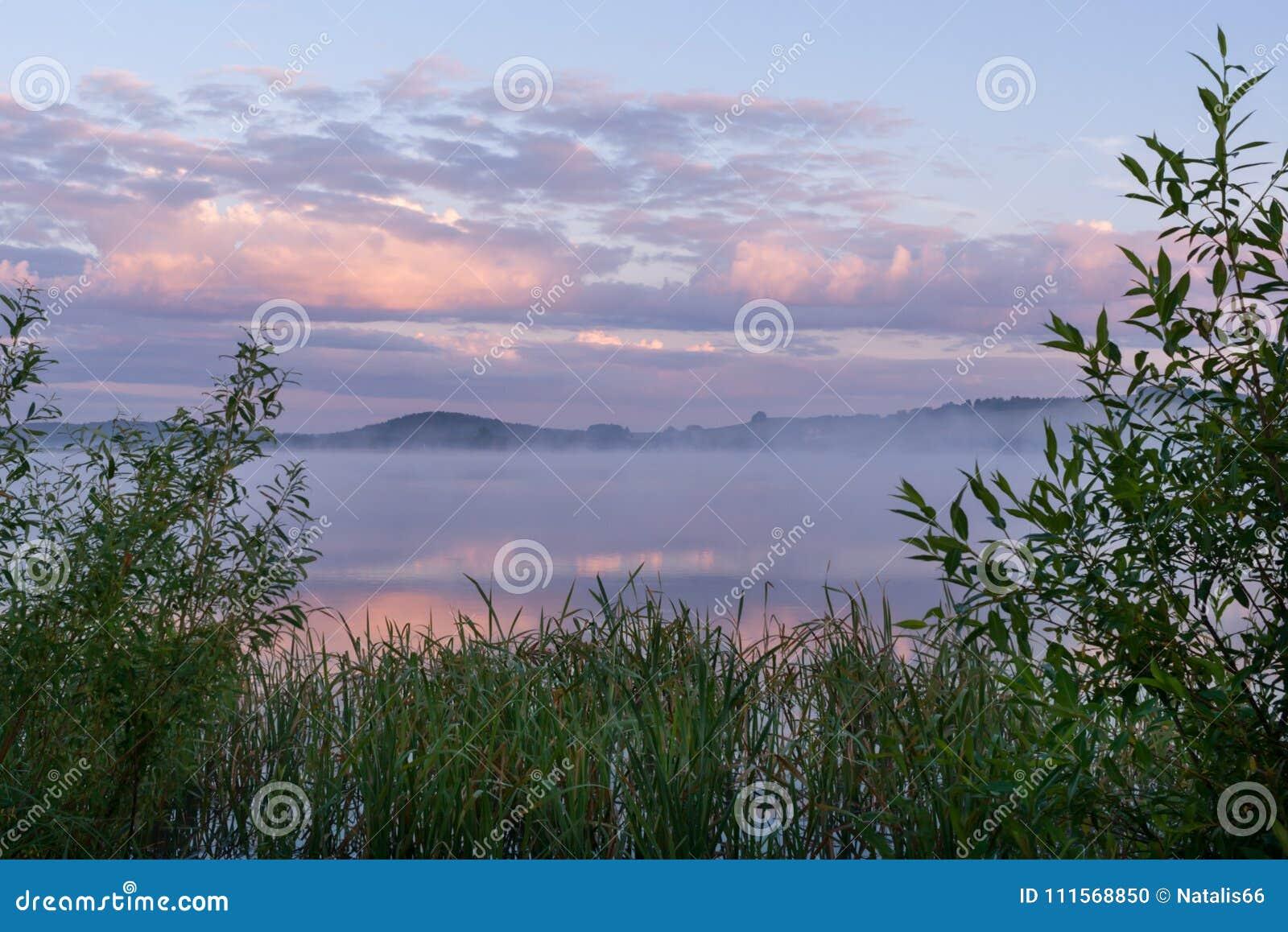 Río Con Niebla Y Nubes Rosadas Y Marco De Matorrales Costeros Verdes ...