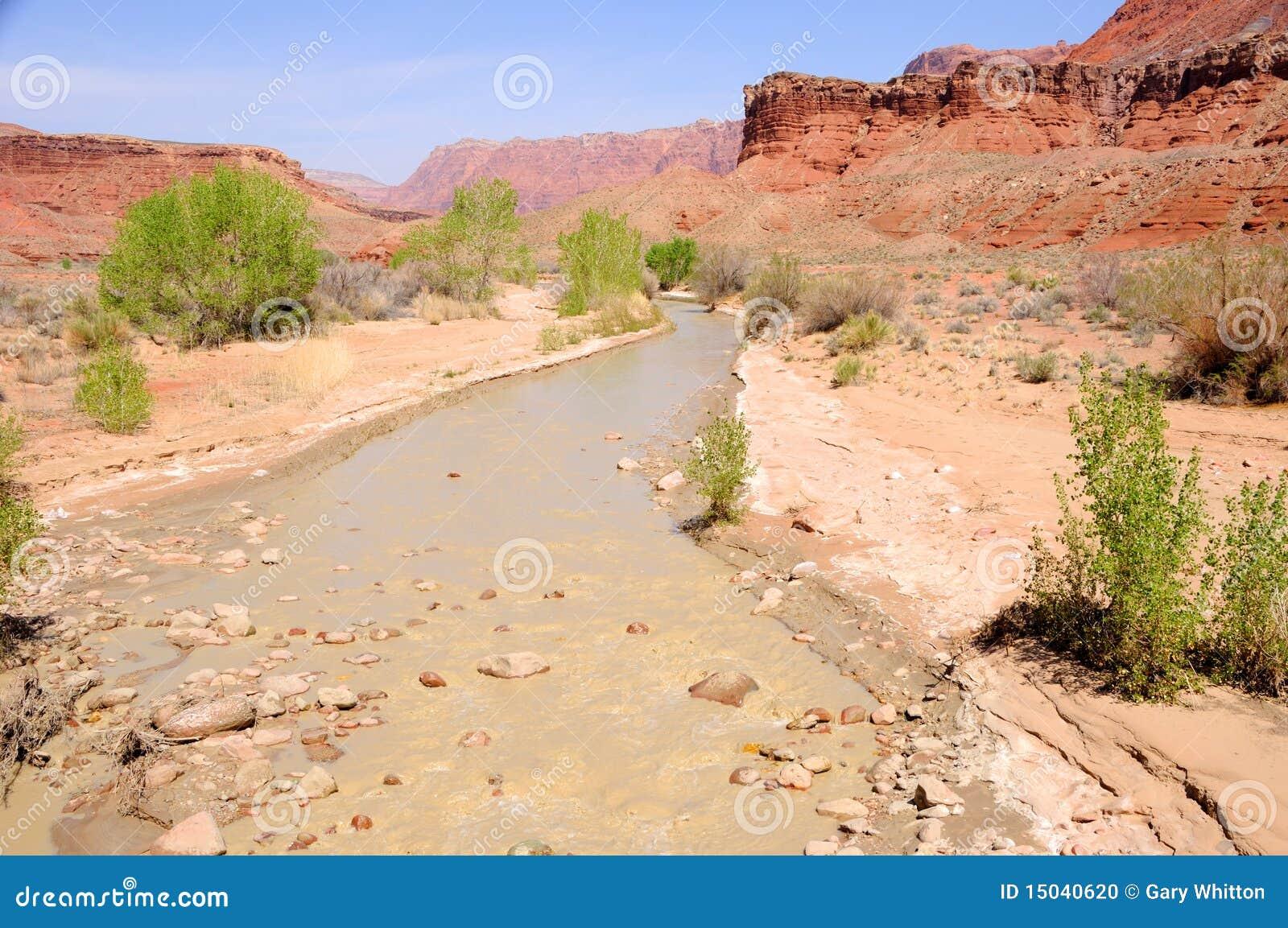 Río de la barranca de Paria