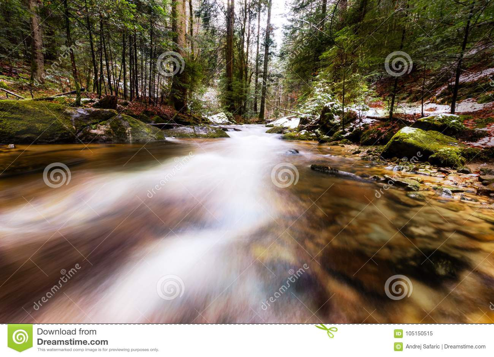 Río de la montaña, corriente, cala con los rápidos en el último otoño, invierno temprano con nieve, garganta vintgar, Eslovenia