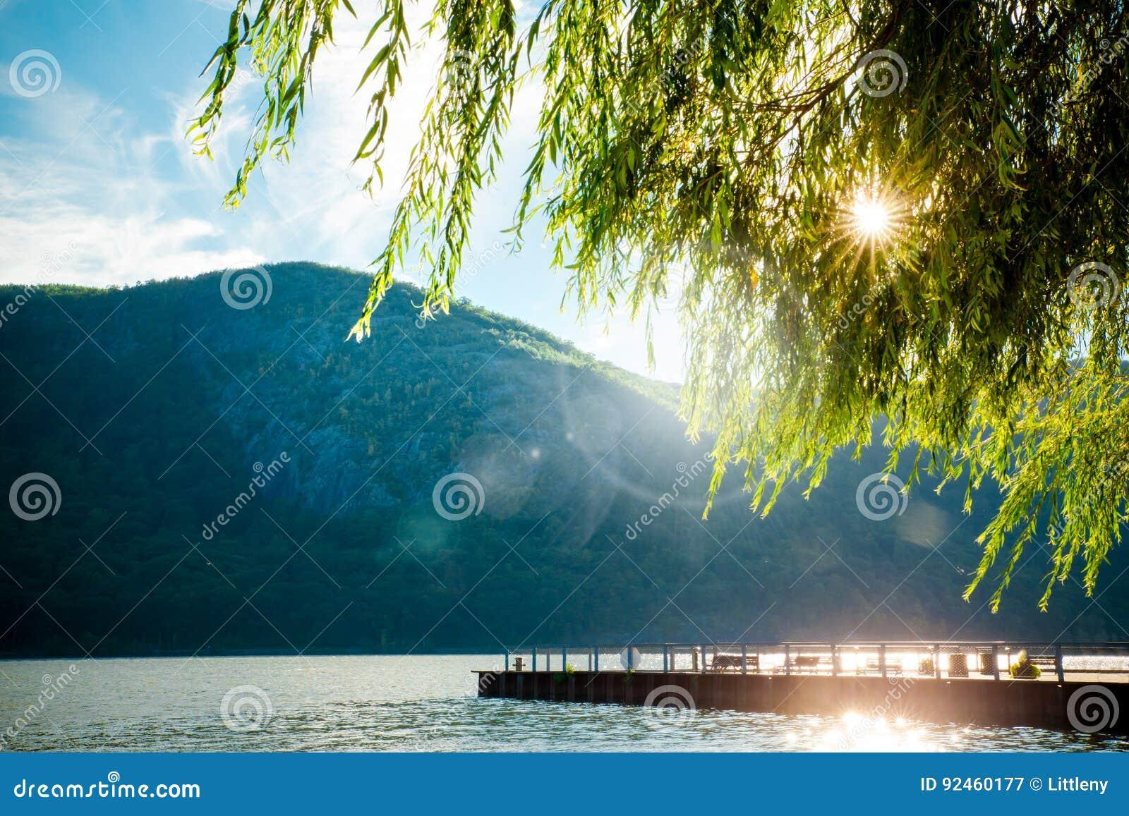 Río de los árboles de las montañas
