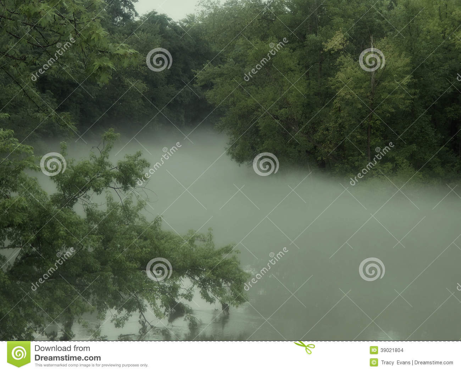 Río de niebla de la bobina
