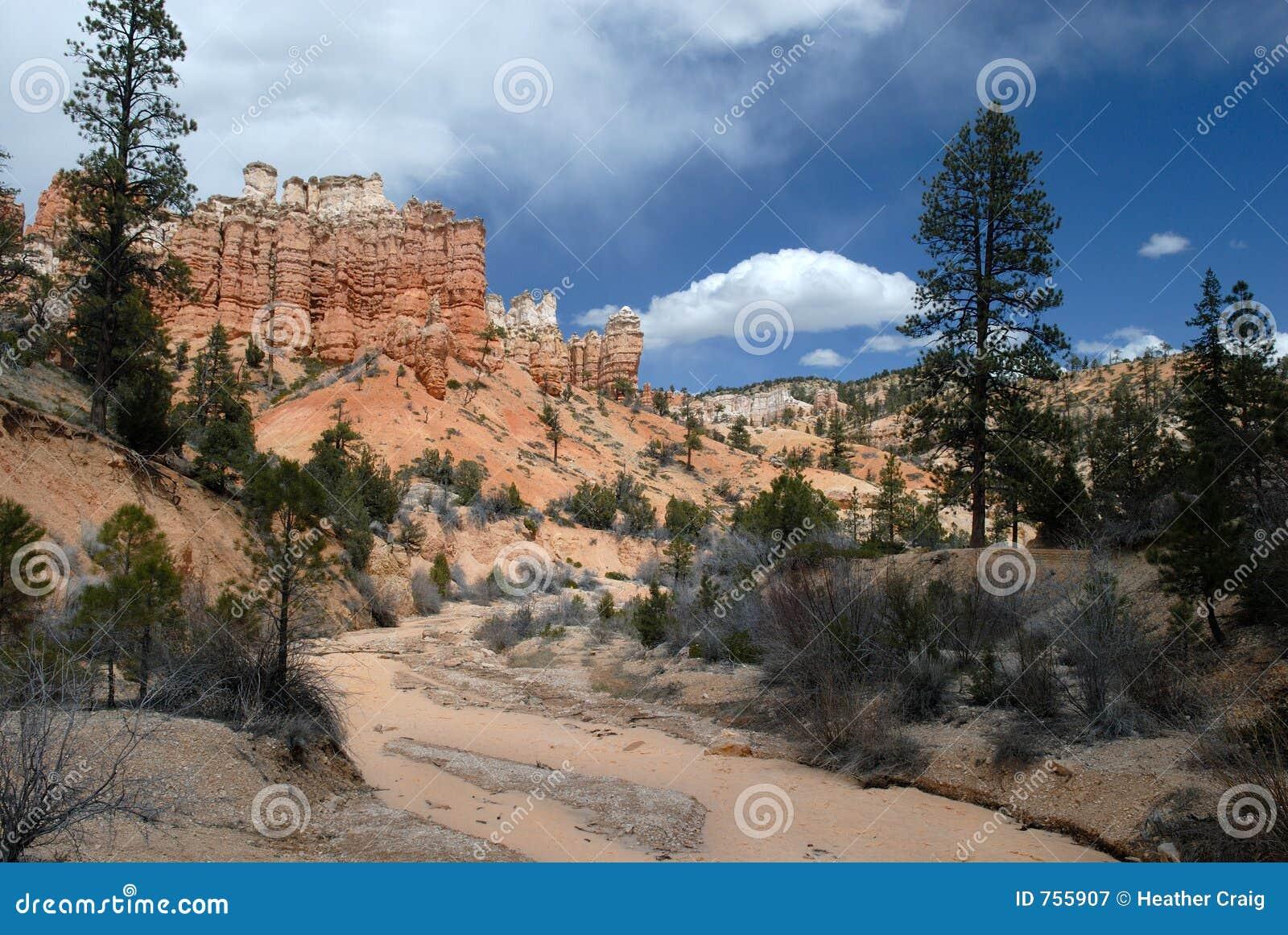 Río del desierto y rocas rojas: Paisaje