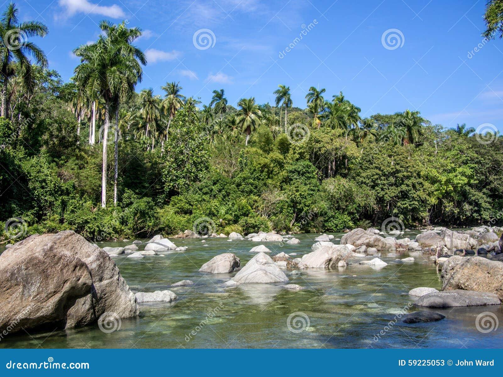 Download Río Duaba Baracoa Cuba imagen de archivo. Imagen de cuba - 59225053