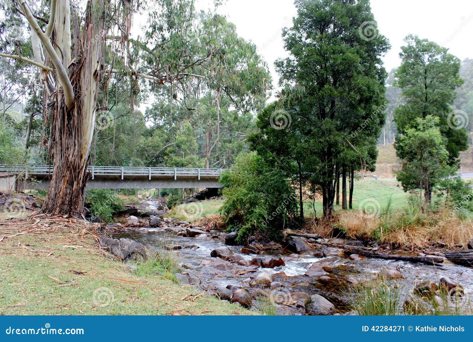 Río Mt Bulla Victoria Australia 2 de Delatite