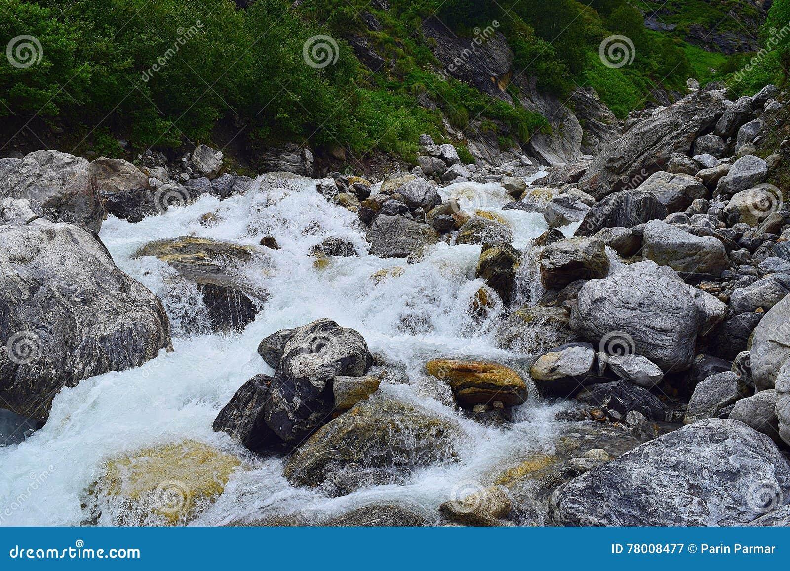 Río Pushpavati que fluye junto con viaje al valle de flores, Uttarakhand, la India