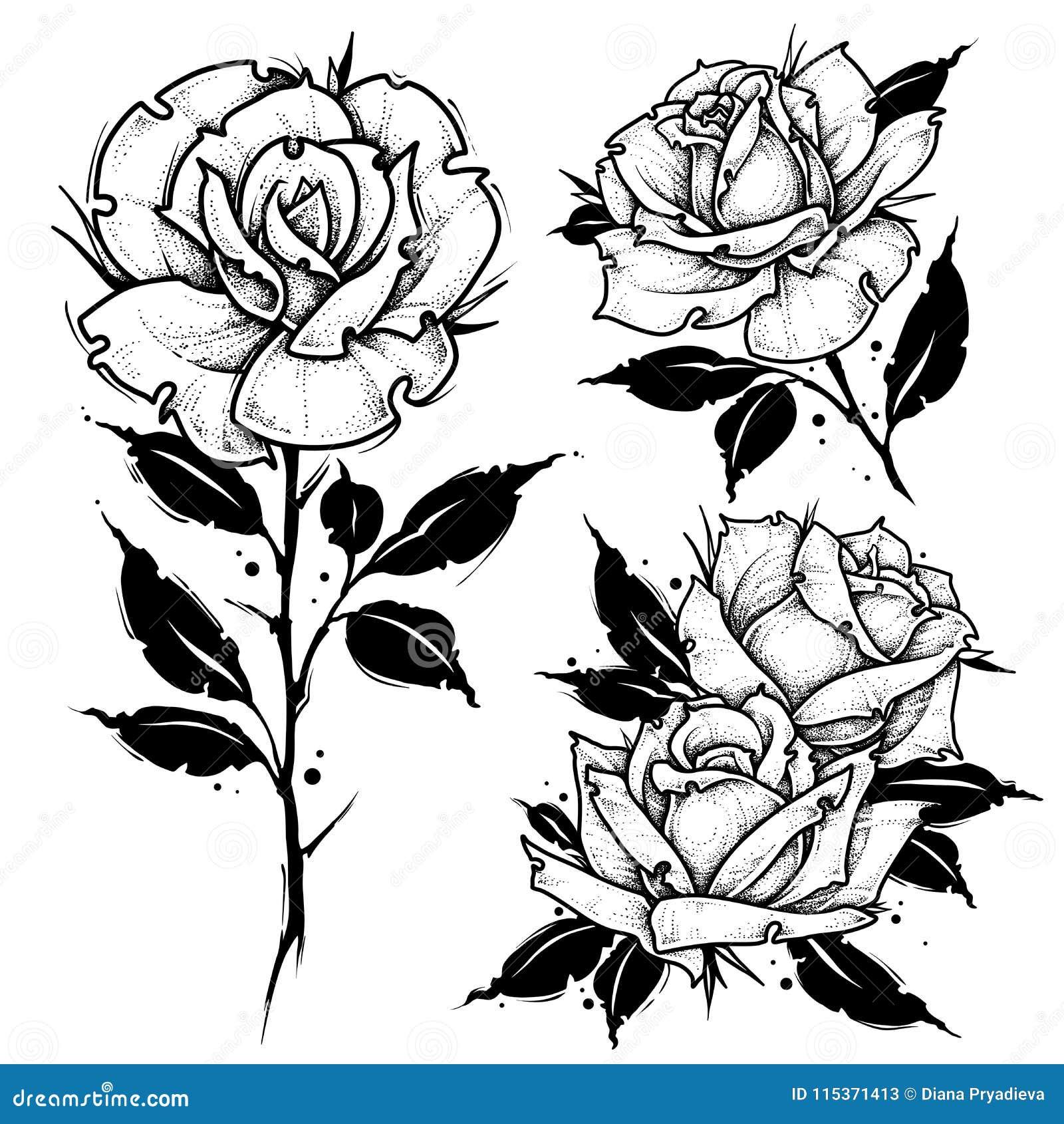 Róża Tatuaż Kropki Pracy Wektoru Ilustracja Ilustracja