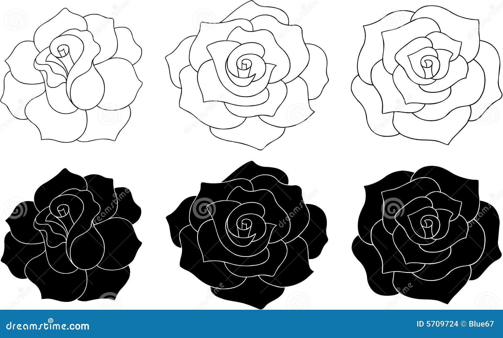 Róże ilustracyjne wektorowe