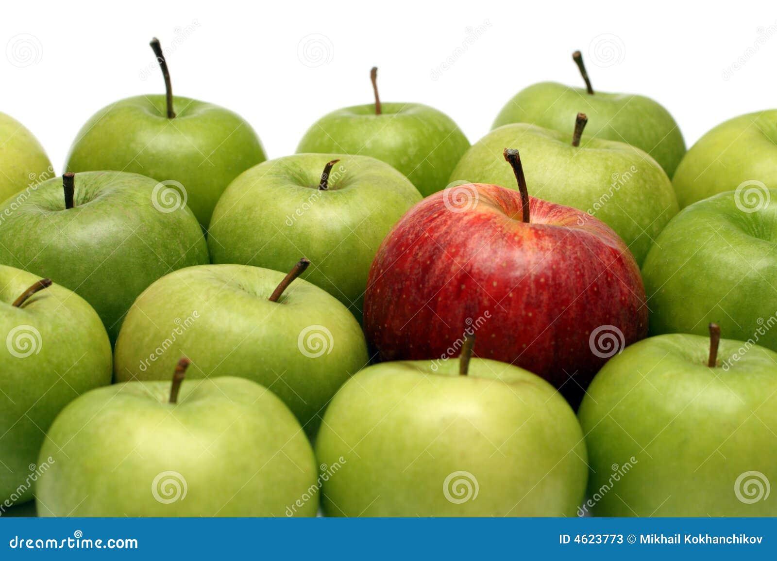 Różne pojęcia jabłek