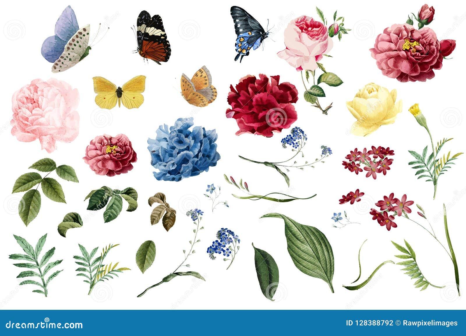 Różnorodne romantyczne kwiatu i liścia ilustracje