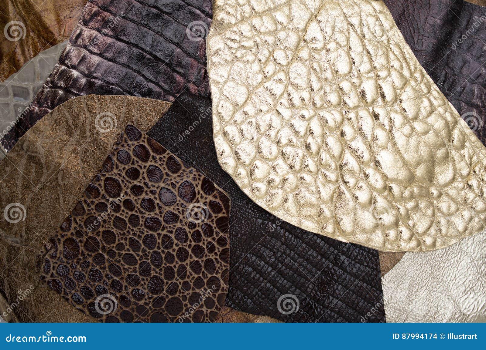 Różnorodny skóry tło