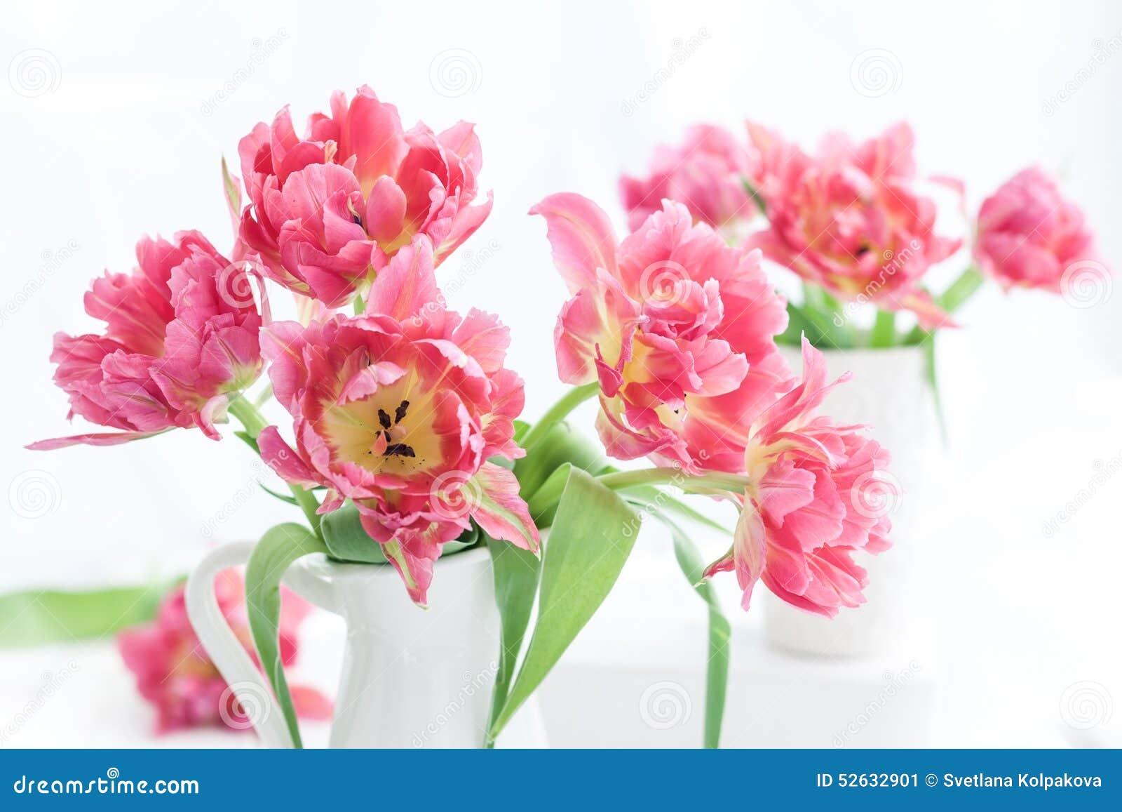 Różowy dwoisty peonia tulipan