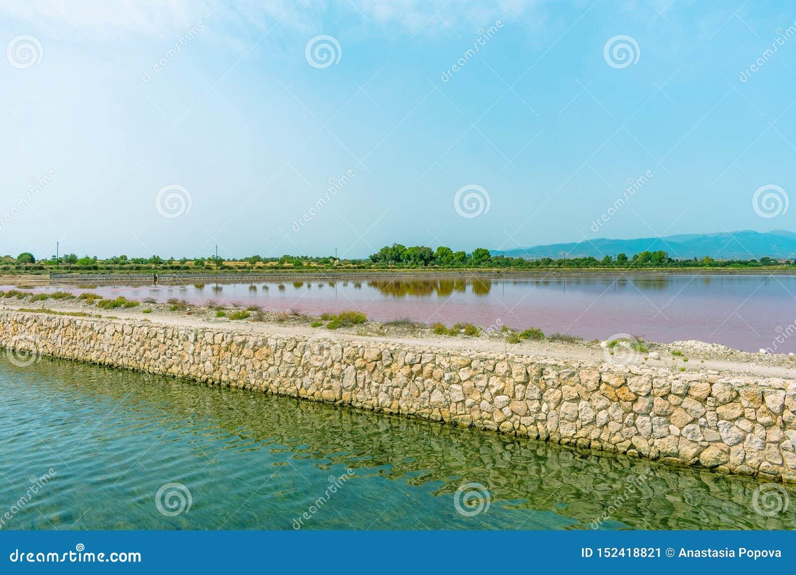 Różowy jezioro w Sardinia wyspie