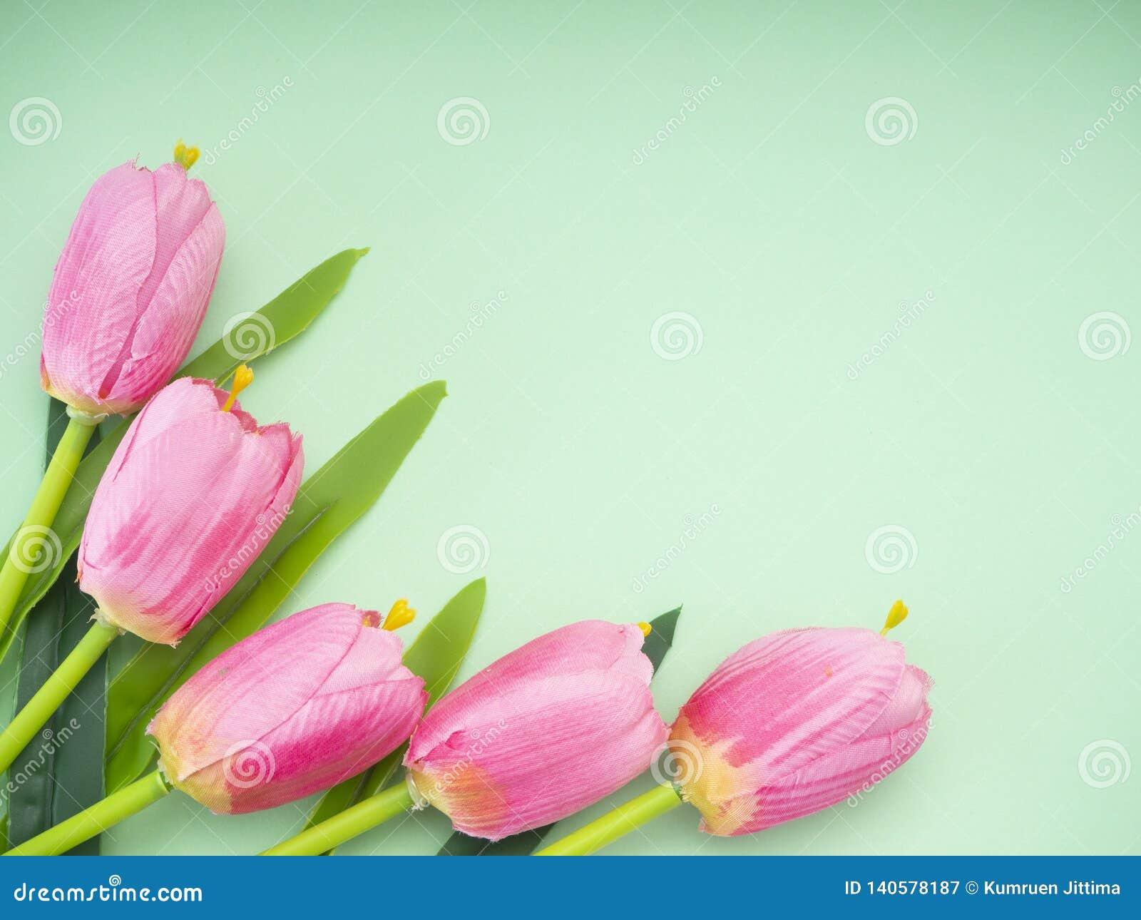 Różowy tulipanu zielonego papieru tło