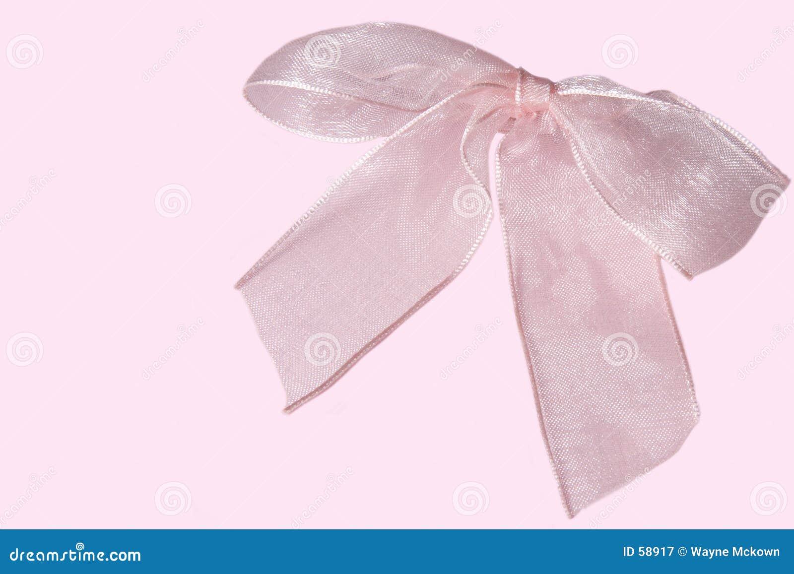 Różowy ukłon