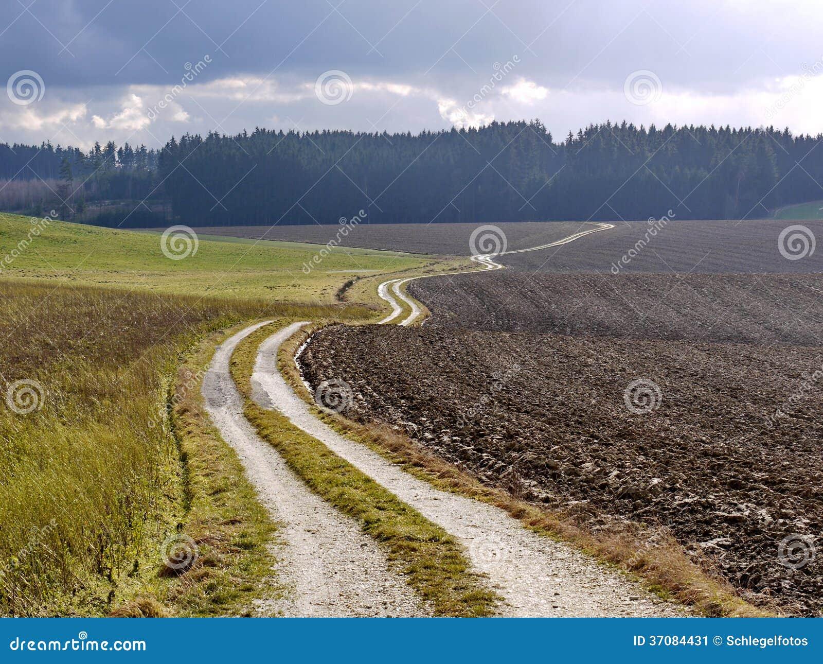 Download Śródpolny Krajobraz W Naturze Obraz Stock - Obraz złożonej z jesienny, uprawa: 37084431