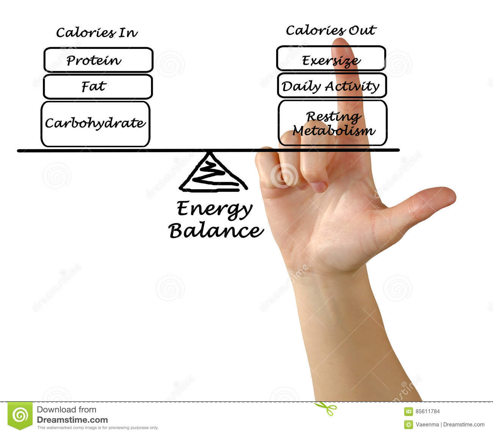 Równowaga między Energetycznym naborem i wydatkiem