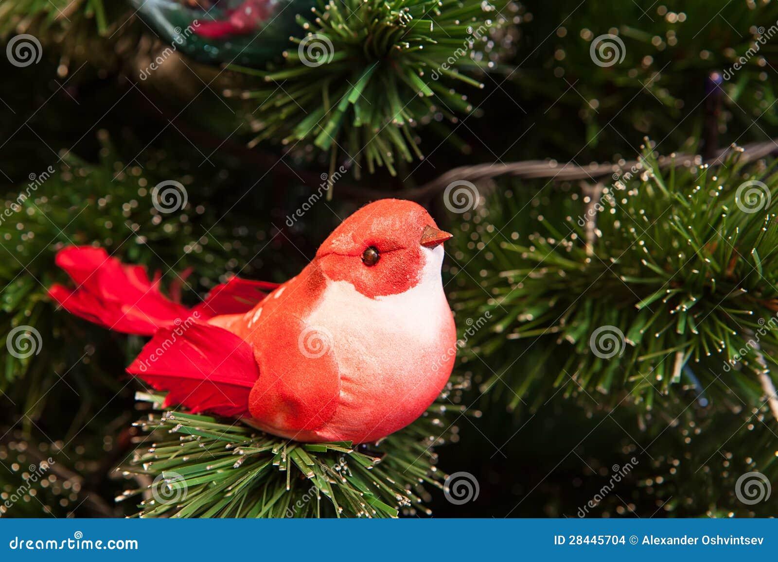 Röd fågel