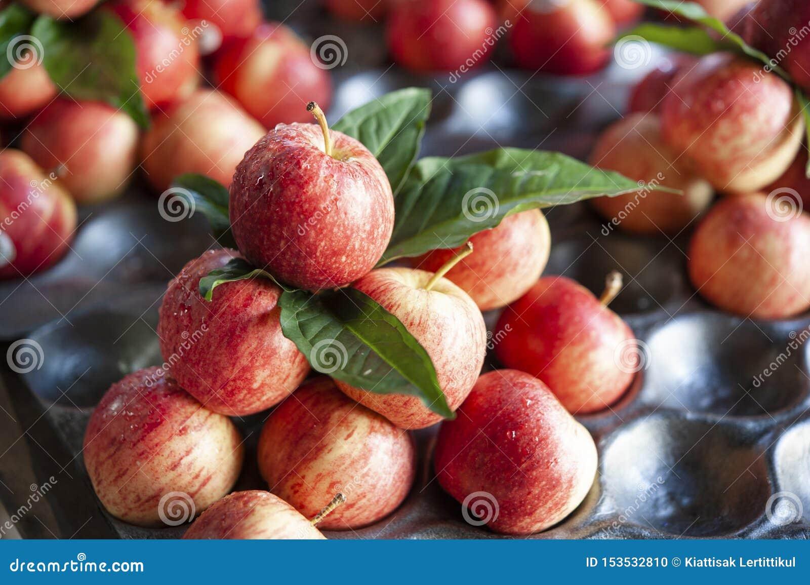 Röd gatamarknad Thailand för äpplen