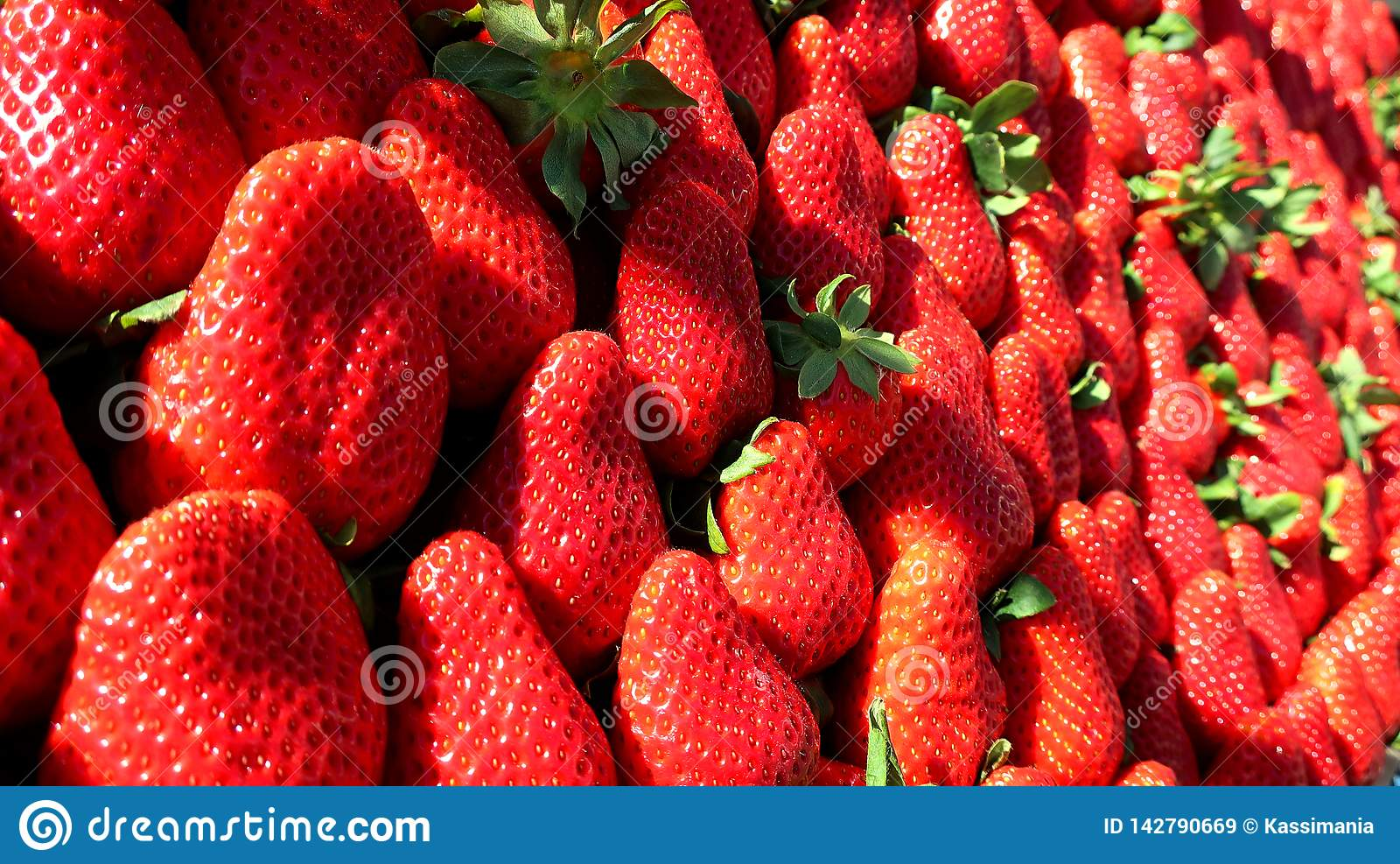 Röd ny jordgubbe från våren