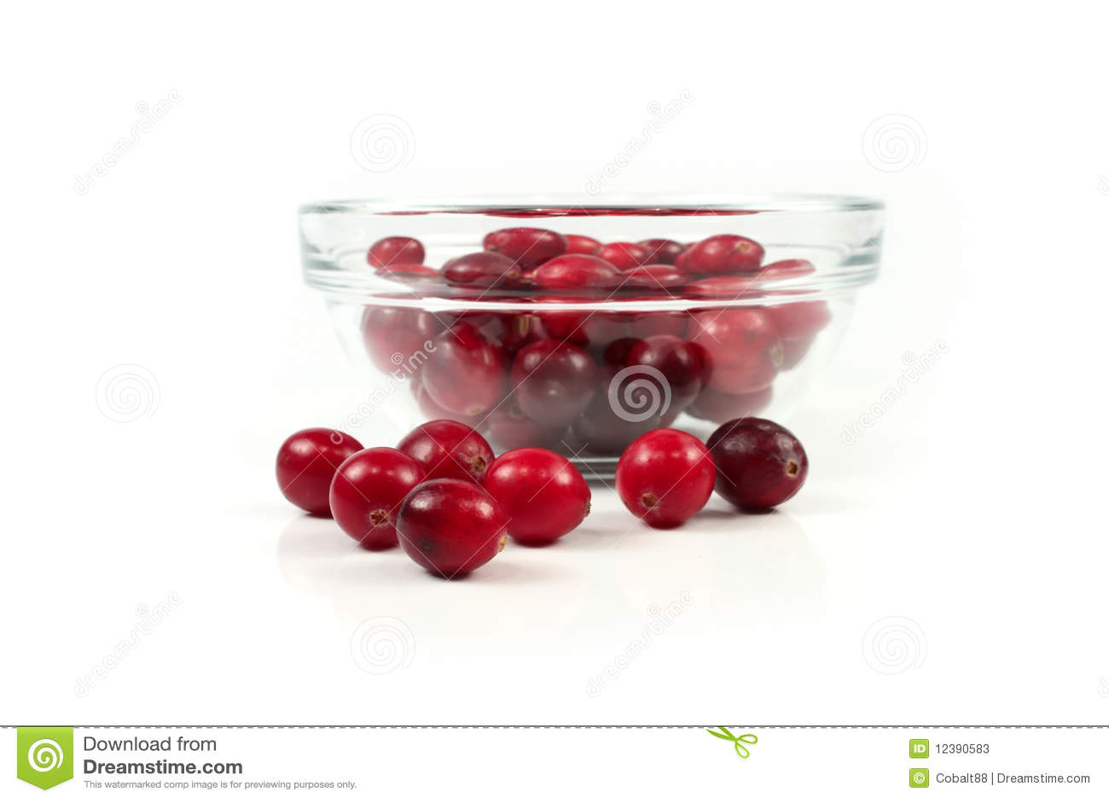 Röd white för cranberry